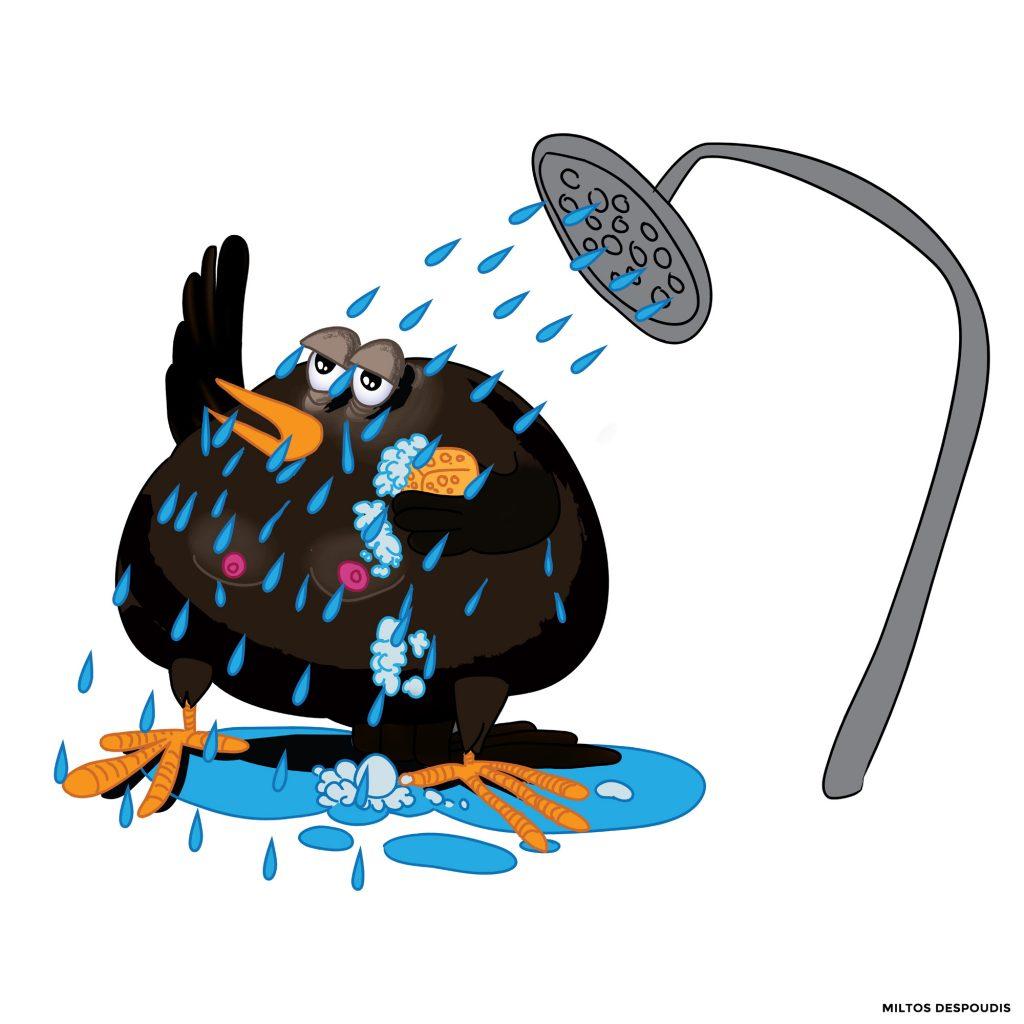 Shower Bird