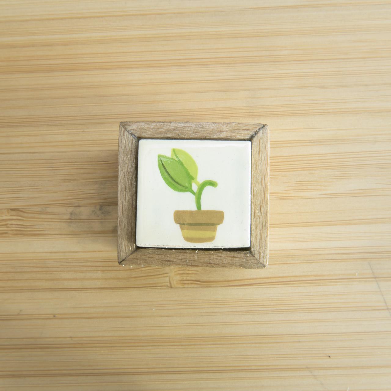 L Plant 1